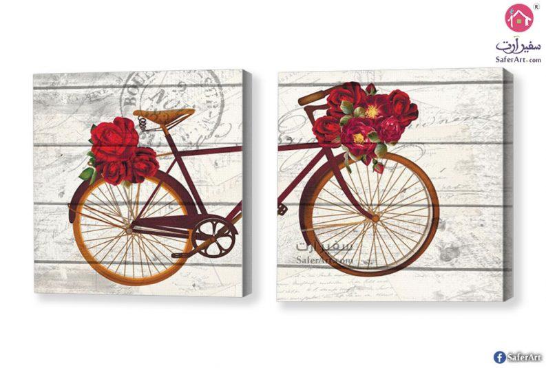 لوحات مودرن دراجه هوائية