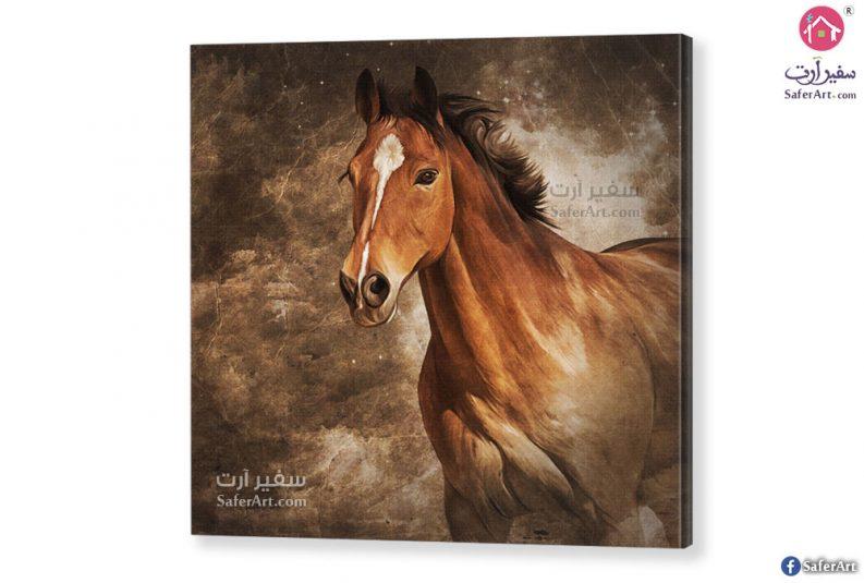 لوحات مودرن حصان عربى
