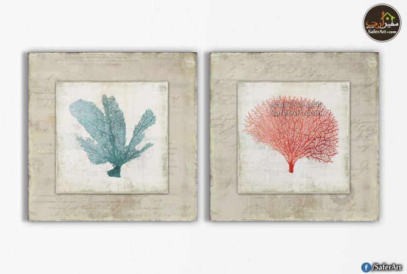 لوحات-نباتات مائيه