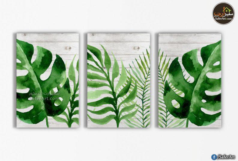أوراق اشجار خضراء