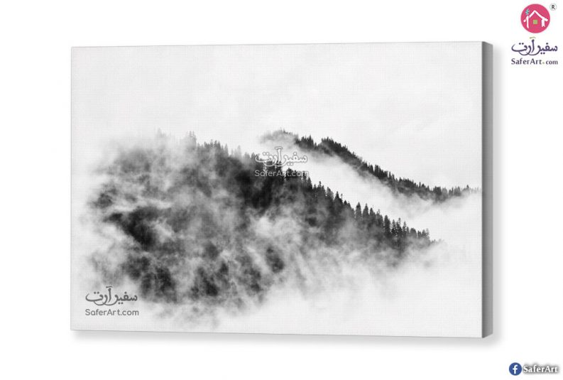 black-and-white-art