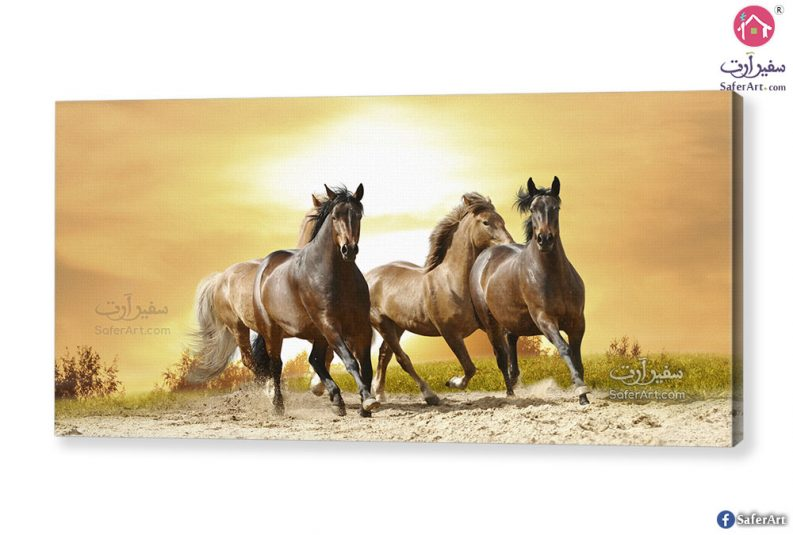 تابلوه مودرن احصنة