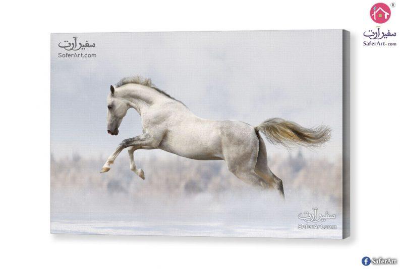 تابلوه الحصان الابيض
