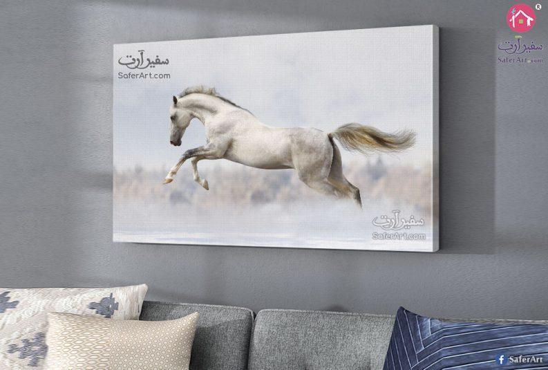 لوحه فنيه الحصان
