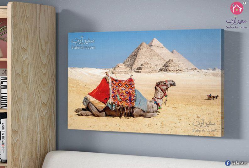 the-Pyramids,-Giza,-canvas