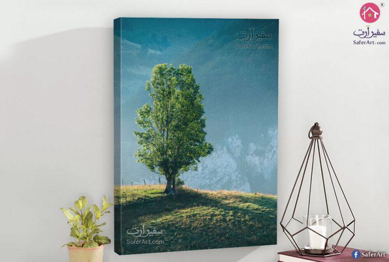 the-tree-canvas