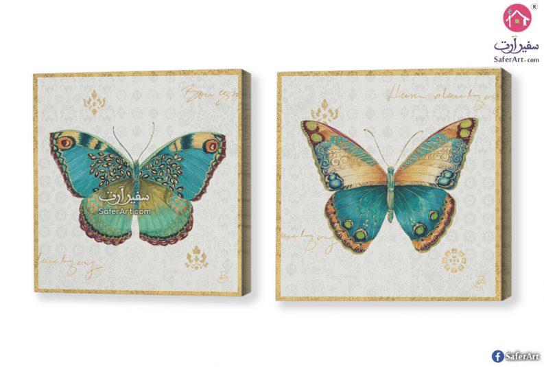 لوحات – فراشات الربيع