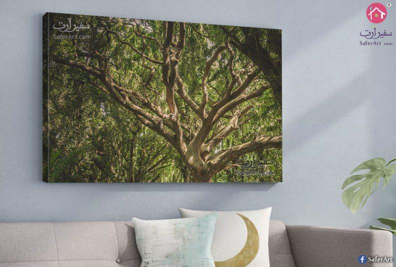 تابلوه مودرن اشجار