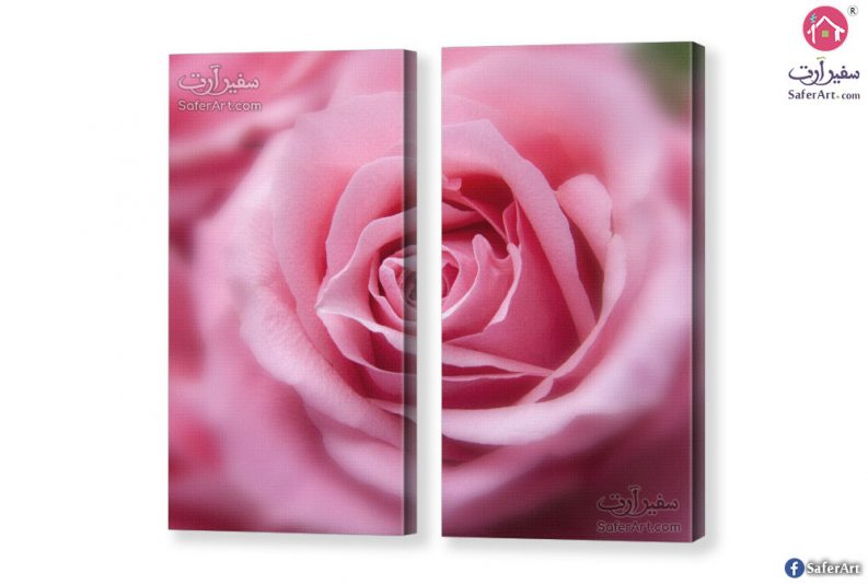 Pretty-Rose-canvas