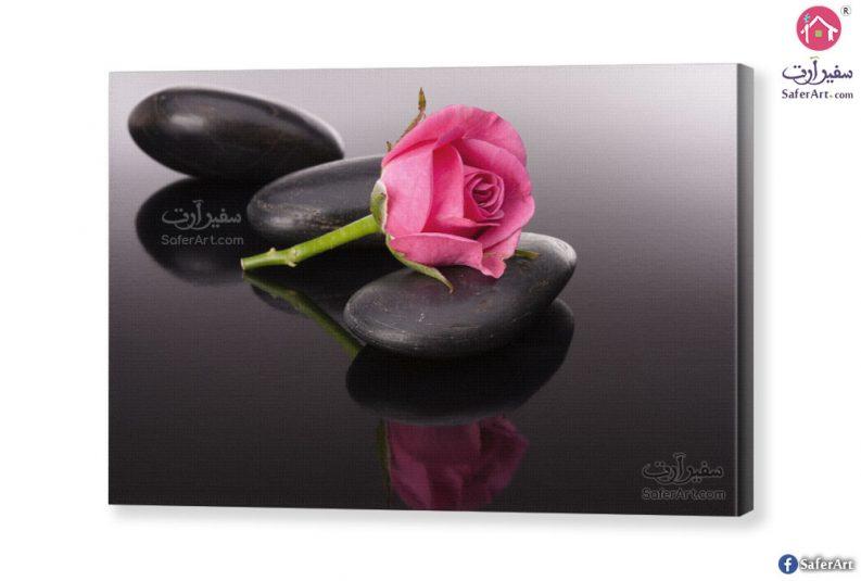 romantic-rose-canvas
