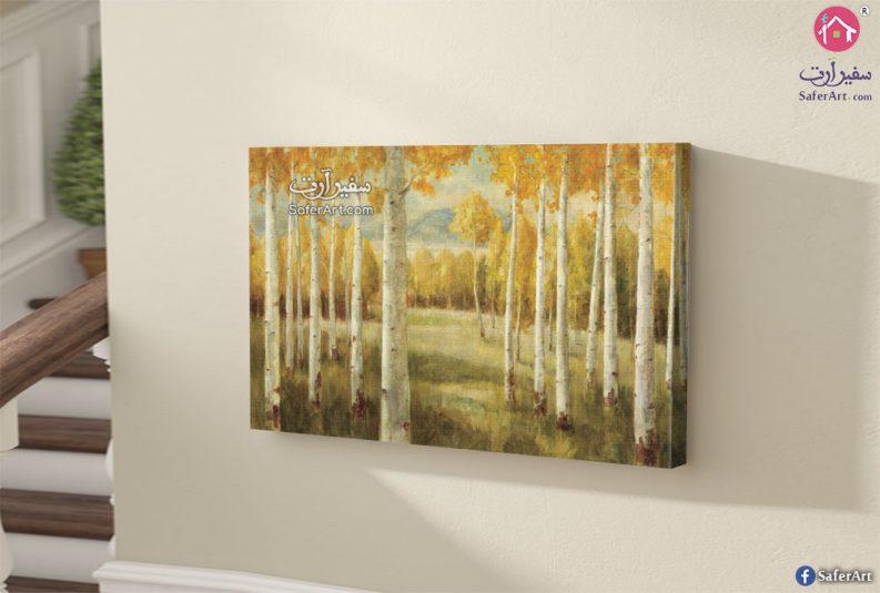 لوحه حائط مميزه لغابه بها اشجار طويله جدا فى فصل الخريف