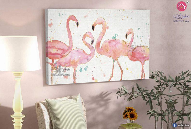طيور الفلامنجو بألوانها الرائعة