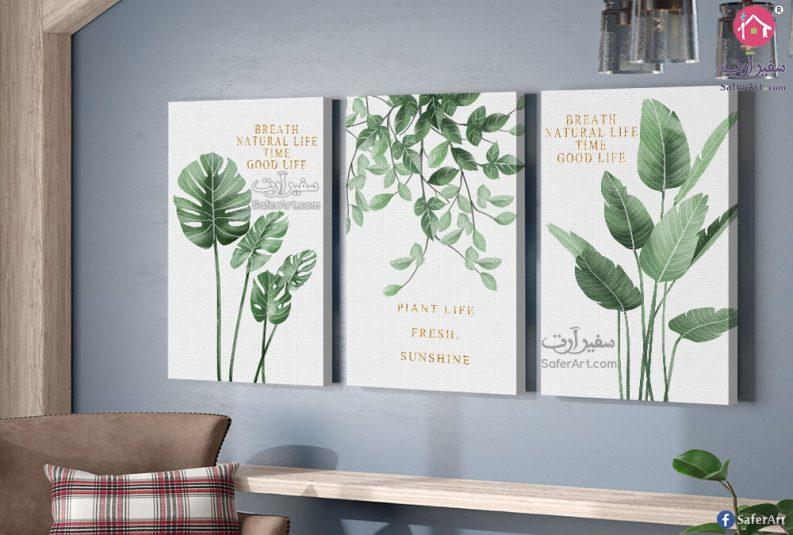 لوحات حائط نباتات