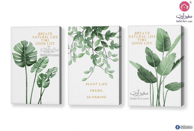 تابلوهات مودرن نباتات