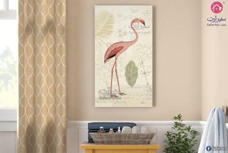 طائر الفلامنجو بألوانه المميزة