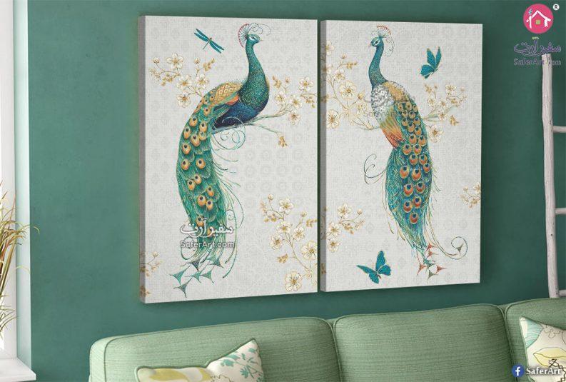 تابلوهات طاووس