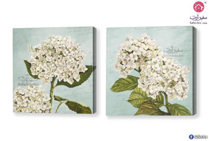 لوحات ورود بيضاء