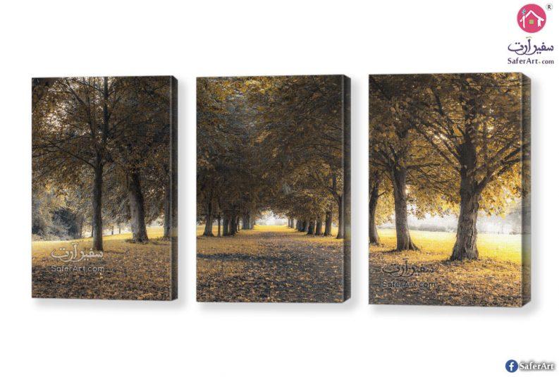 تابلوهات غابات وأشجار